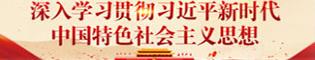 4-1深入学习贯彻习近平新时代中国特色社会主义思想(三拼第1行1)